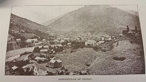 Downieville, California - 1890s Downieville