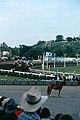 1982-07-12 Alb07-06-Calgary Stampede.jpg