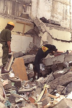 1998 United States embassy in Nairobi bombings IDF relief V.jpg