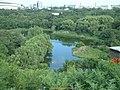 2002年长春动植物园 - panoramio (2).jpg