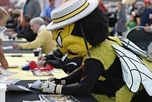 Chicago Sting Mascot 'Stanley Sting' pictured in 2009.