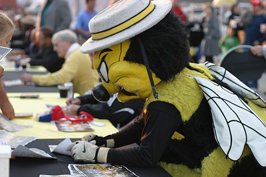 mascotte van Chicago Sting
