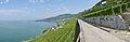 2012-08-12 10-42-20 Switzerland Canton de Vaud Chexbres 3h.JPG