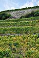 2012-08-12 12-49-03 Switzerland Canton de Vaud Grandvaux.JPG