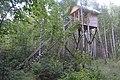 2014 01 Национальный парк Мещёрский.jpg