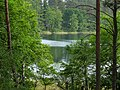 2015-05-25 Rochowsee 468.jpg