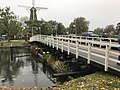 20161115 Valkbrug Leiden.jpg