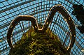 2016 Singapur, Gardens by the Bay, Las Mglisty (03).jpg