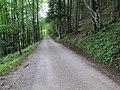 2018-08-11 (179) Way to Tirolerkogel, Annaberg, Austria.jpg
