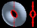 3D-Leveltorus-Reebgraph.png