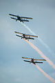 3 Antonov AN-2 formation flight, 2011.jpg