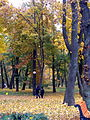 80-382-0088 Kiev Grushevskogo Mariinsk 001.JPG