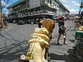 9960Baliuag, Bulacan Proper during Pandemic Lockdown 39.jpg