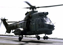 AS332 Super Puma UAE.jpg
