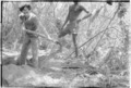 ASC Leiden - Coutinho Collection - 13 11 - Campada college on the northern frontline, Guinea-Bissau - Digging trenches - 1973.tif