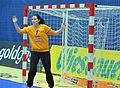 AUT-SVK handball 2014-04-10.jpg