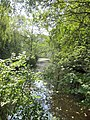 A shady woodland pool in Lords Wood (geograph 4157680).jpg