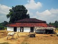 A traditional home in Kanha landscape IMG 0509.jpg