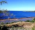 Abagatanen Beach of Pangasinan.jpg