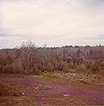Abandoned Duluth, Missabe and Iron Range Railroad track, Elcor, Minnesota.jpg