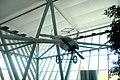 Aeropuerto Internacional de Carrasco - panoramio (60).jpg