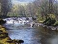 Afon Conwy - geograph.org.uk - 1375097.jpg