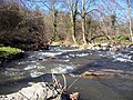 Afon Dulas - geograph.org.uk - 728572.jpg
