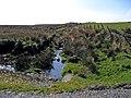 Afonig Ffriddog - geograph.org.uk - 379198.jpg