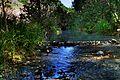 Aguas sulfurosas del Rio Manilva.jpg