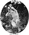 Aime morot dryade 1884.jpg