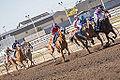 Alberta Breeders' Fall Classic 2014 - Horse Racing (15281613986).jpg