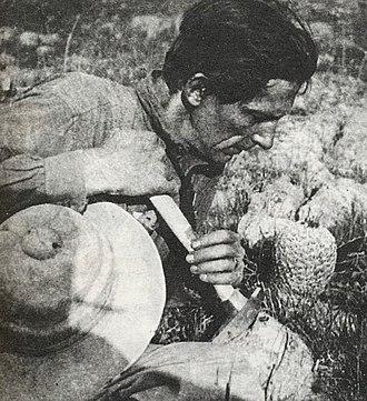 Alberto Vojtěch Frič - Alberto Vojtech Frič, Mexico 1923