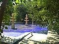 Alborz HighSchool Pool Tehran Iran 002.jpg