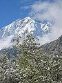 Altai0085 (93590324).jpg