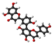 Ball-and-stick model of amentoflavone