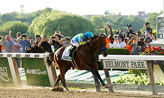 2015 Belmont Stakes - American Pharoah won the Belmont Stakes to become the 12th winner of the US Triple Crown.