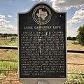 Annie Carpenter Love (47985366671).jpg