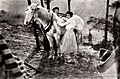 Arabian Love (1922) - 5.jpg