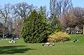 Arboretum Zürich 2014-03-14 14-21-45.JPG