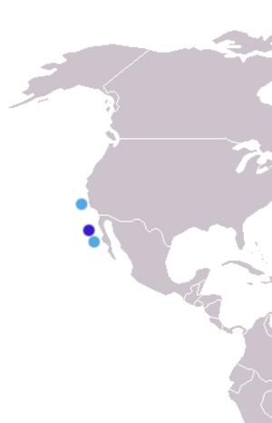 Guadalupe fur seal - Image: Arctocephalus townsendi distribution