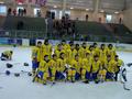 Arena Sanok, Ukrainian Team.png