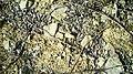 Argile et calcaire en Cabardès.jpg