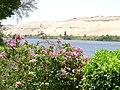 Aswan Botanical Garden 004.jpg