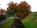 Autumn Around The Beck - geograph.org.uk - 1574627.jpg