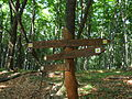 Bükk Mountains 07 (by Pudelek) - footpath fingerpost.JPG