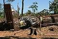 Bažantnice (Hodonín) after tornado strike 2021-07-10 1810.jpg