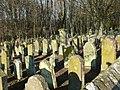 Bad Rappenau - Heinsheim - Jüdischer Friedhof - Südwestecke Blick über Mauer.jpg