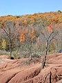 Badlands during fall 1 (5090780605).jpg