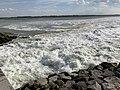 Baie Somme - Le Crotoy (FR80) - 2021-05-29 - 14.jpg