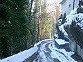Balgach - hinter grünenstein - panoramio.jpg